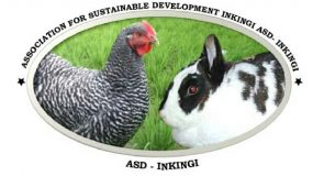 ASD Inkingi